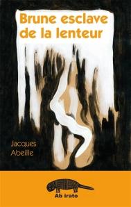 Abeille_Brunie-esclave